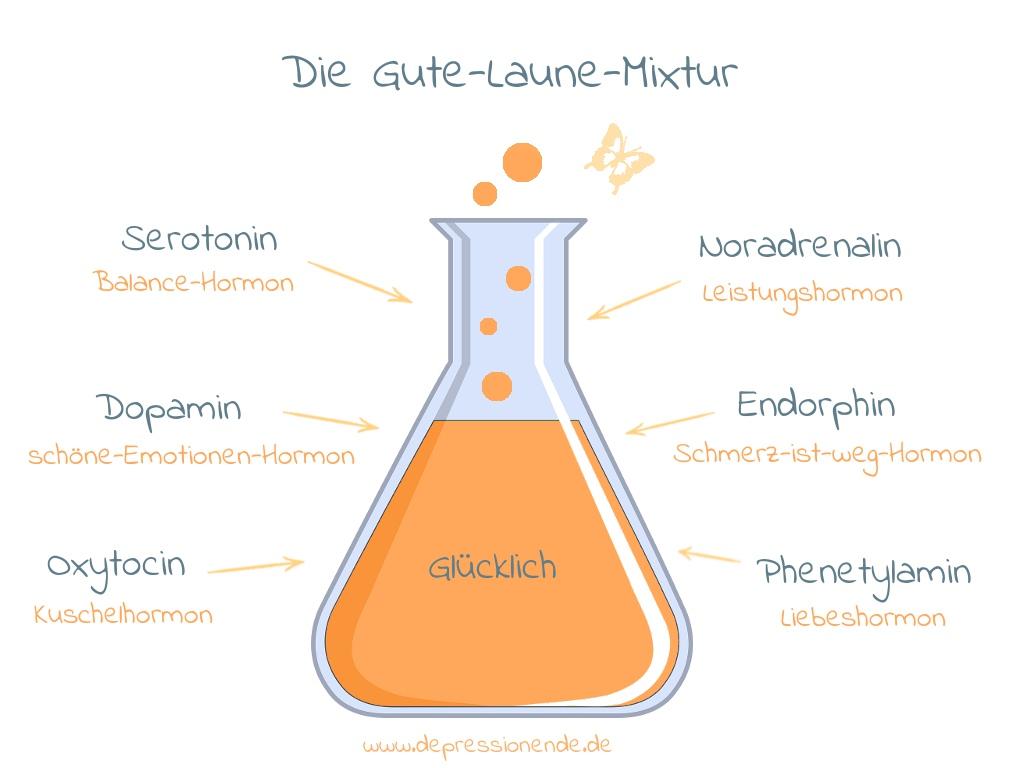 Die 6 Glückshormone - Serotonin, Dopamin, Oxytocin, Noradrenalin, Endorphin und Phenetylamin